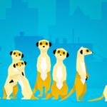 #ConsoCollab : Hurikat, ou l'histoire d'un lancement chahuté par Meerkat et Google