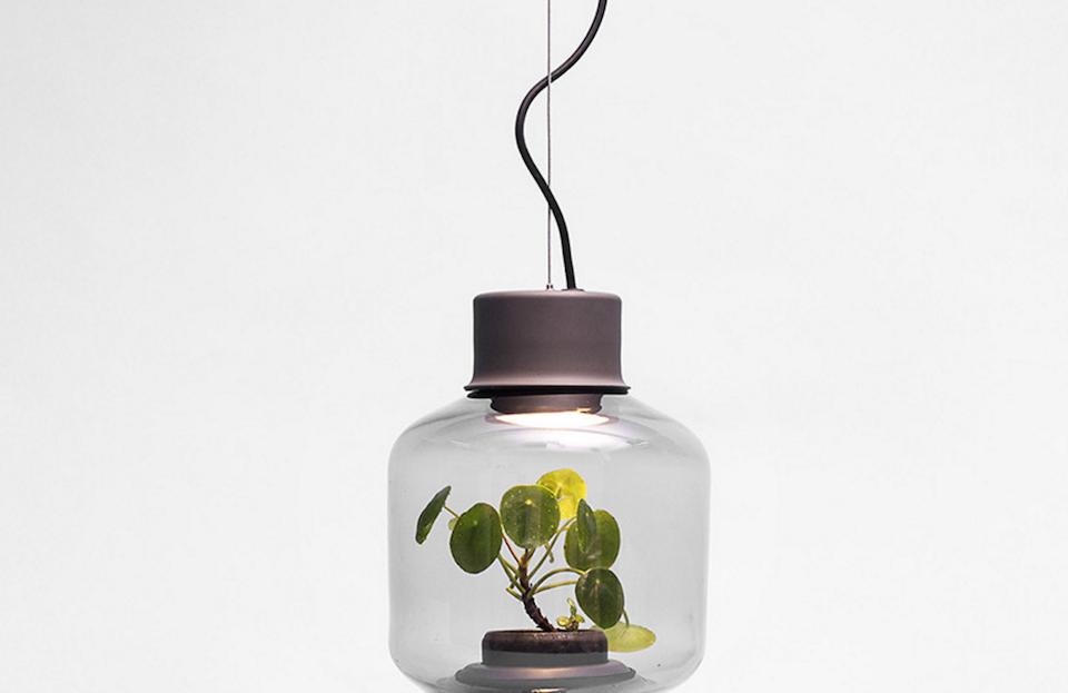 maddyworld 4 id es business d couvrir gopark mygdal plantlamp into the vortex et dancer. Black Bedroom Furniture Sets. Home Design Ideas