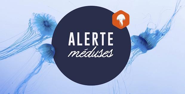 alerteméduses