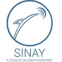 Sinay