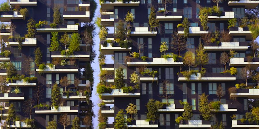 La végétation pour tous, un nouveau modèle pour la cité de demain ?